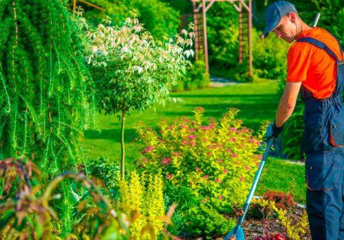 servicio-jardineria